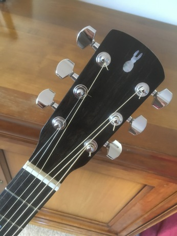Ebony Headstock Veneer